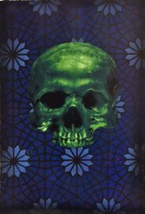 Logan Hicks -Skull
